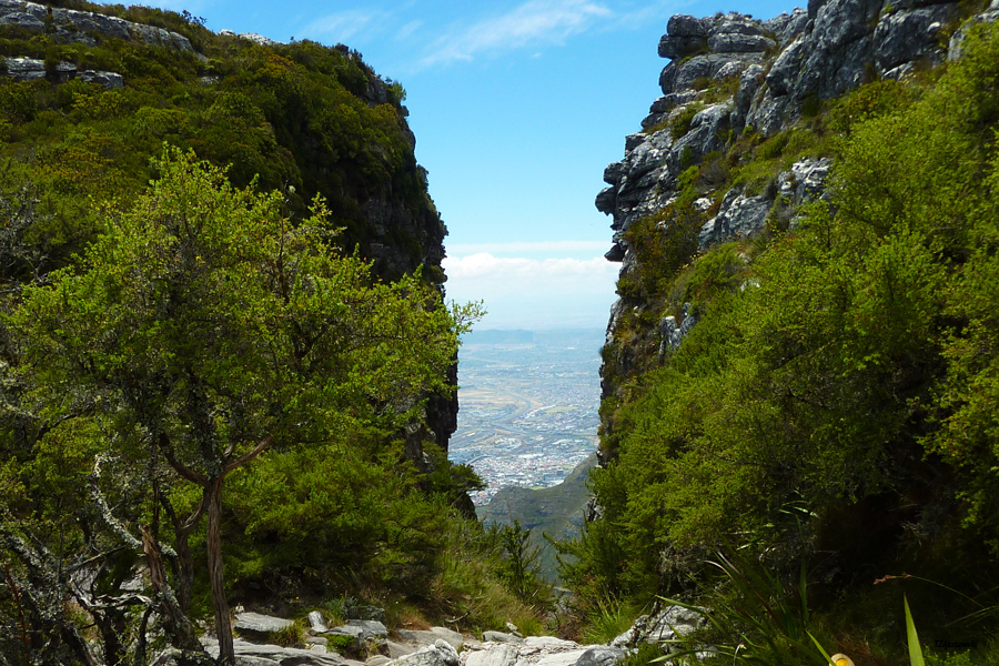 02-Table-Mountain-front