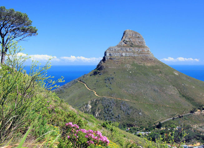 cape-town-lions-head-from-table-mountain-large