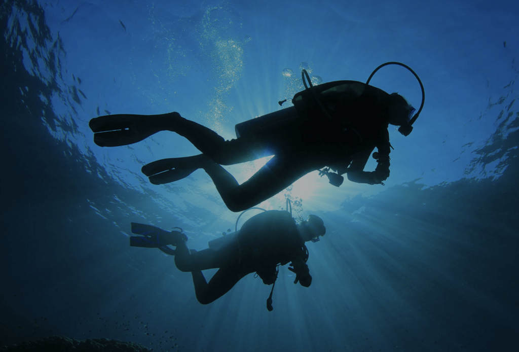 Around-About-Cars-Diving-min