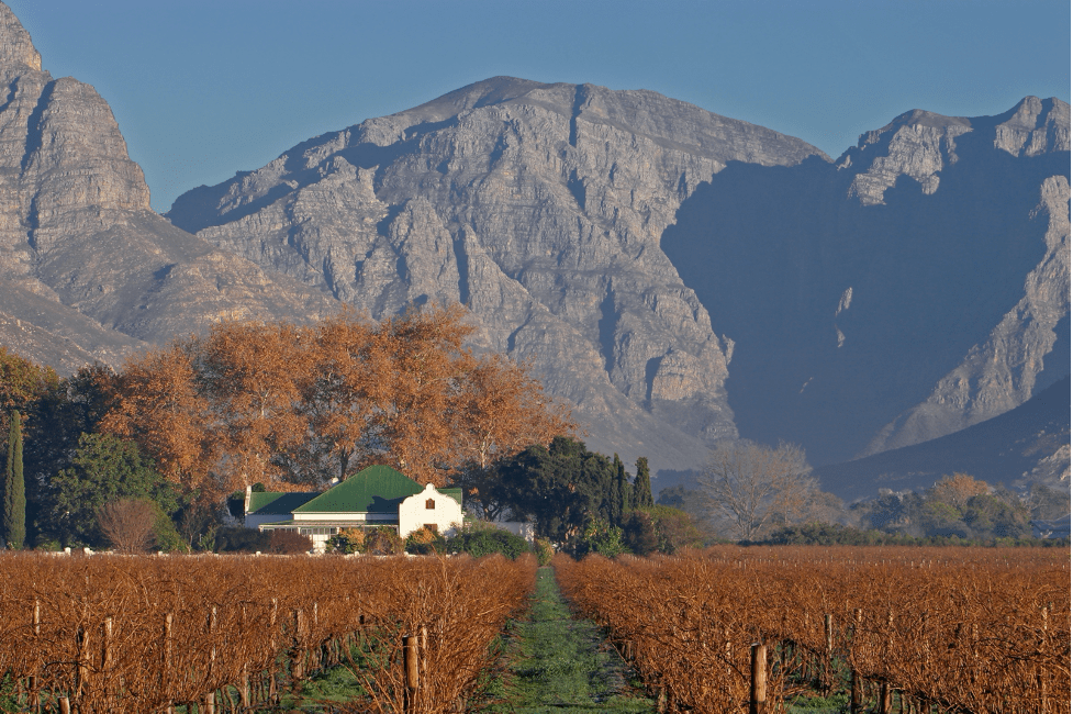 car-hire-cape-town-winefarm-mountains-min