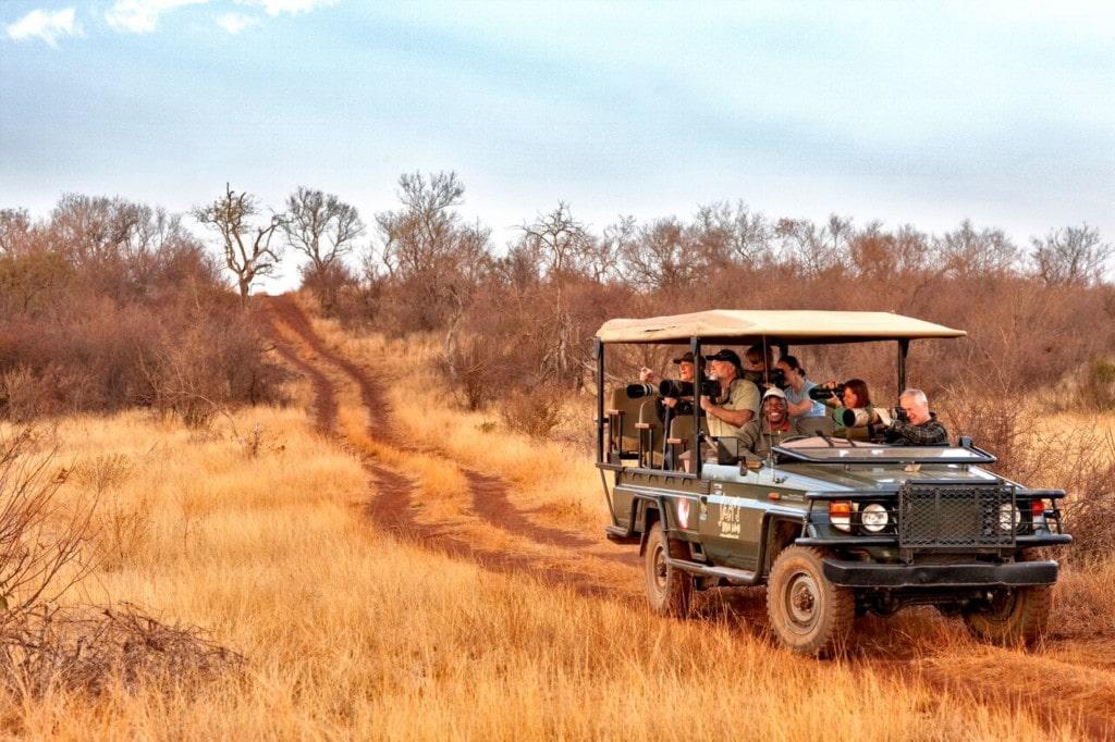 Around-about-cars-Safari-min
