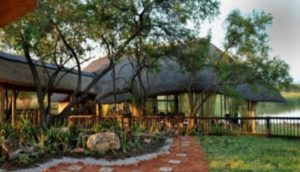 3 Into-the-bush-with-a-car-hire-Johannesburg-Mabula-Game-Reserve-min