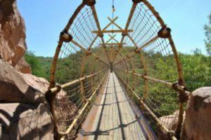 Visit-Sun-City-with-your-Johannesburg-car-rental-swinging-bridge-min