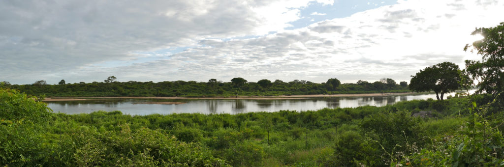 Sabie River Camp - Around About Cars
