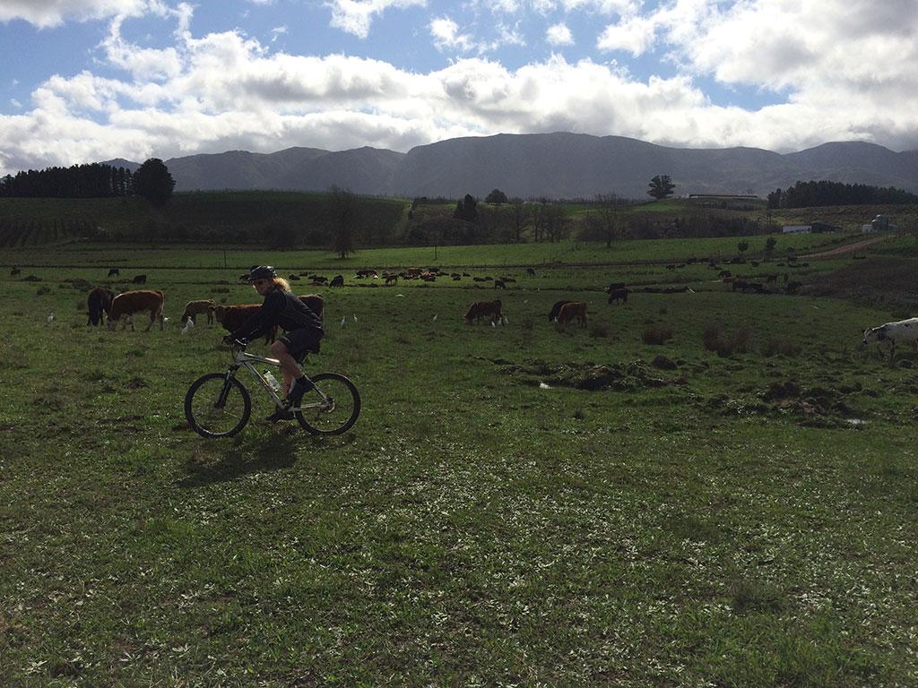 Mountain Biking 2.