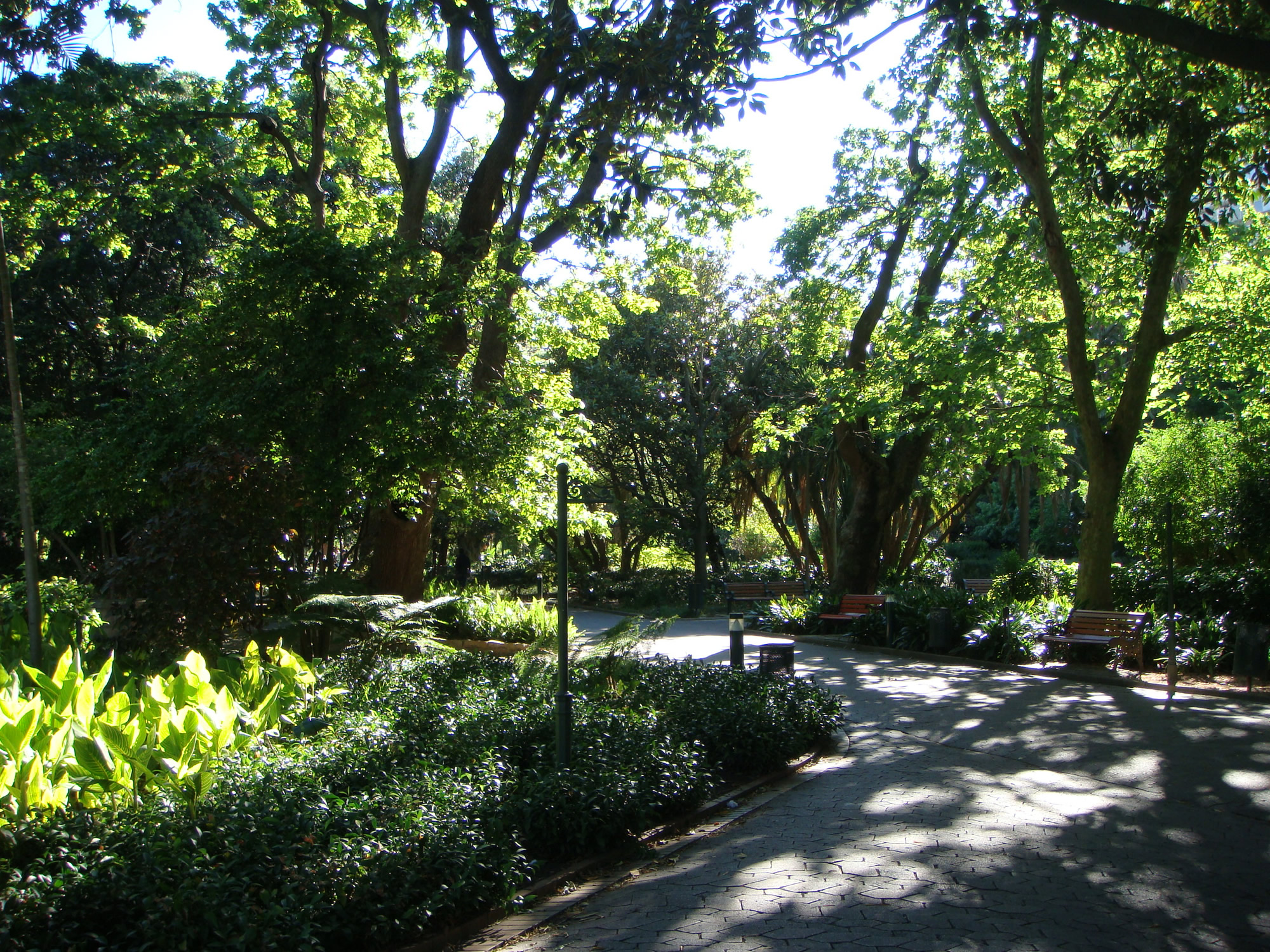 Walking in the Company Gardens