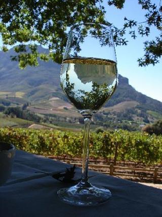 Wine Delaire.